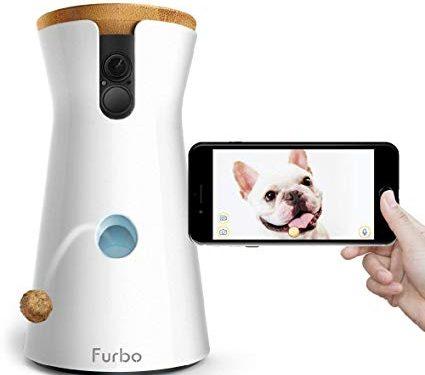 Elektronisk hundepasser